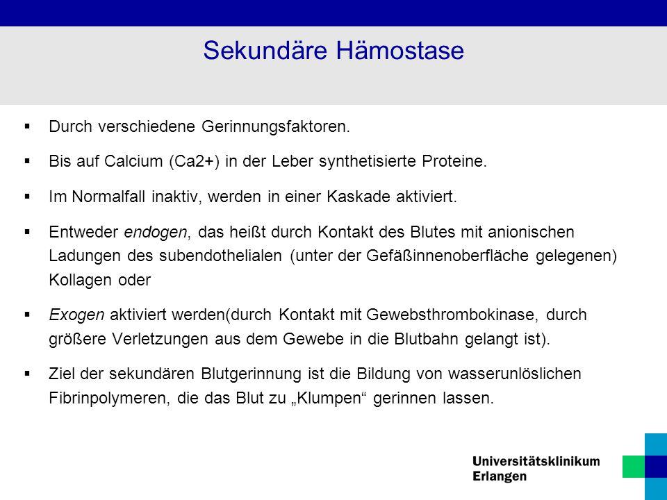 Sekundäre Hämostase Durch verschiedene Gerinnungsfaktoren.