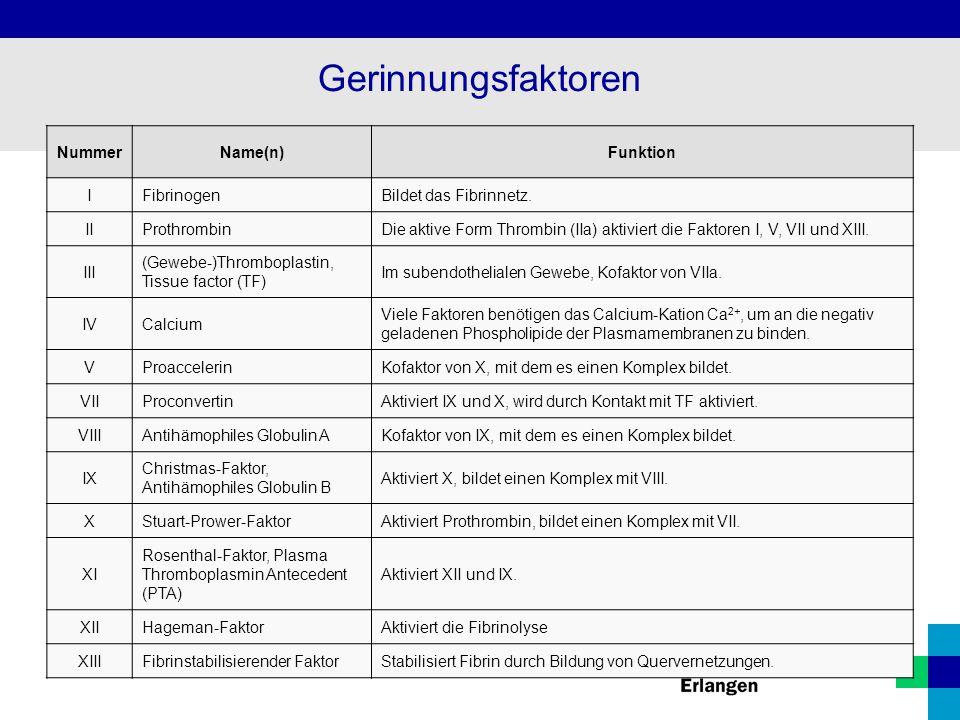 Gerinnungsfaktoren Nummer Name(n) Funktion I Fibrinogen