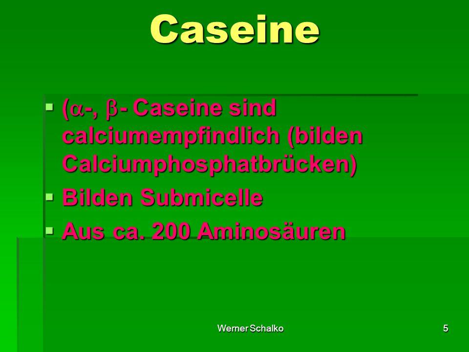 Caseine (-, - Caseine sind calciumempfindlich (bilden Calciumphosphatbrücken) Bilden Submicelle.