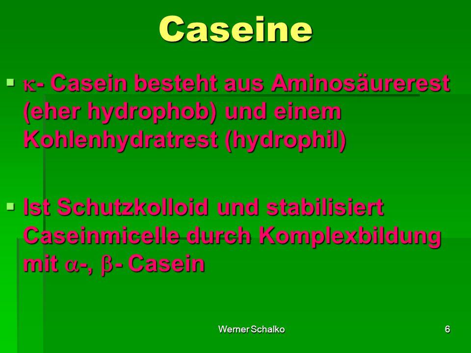 Caseine - Casein besteht aus Aminosäurerest (eher hydrophob) und einem Kohlenhydratrest (hydrophil)