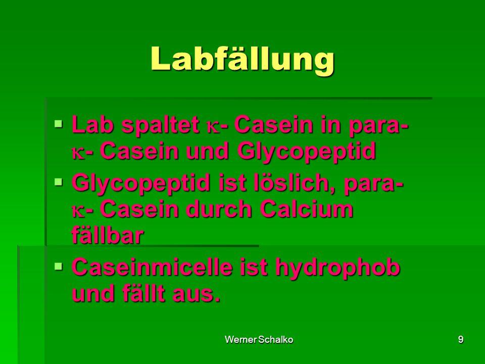 Labfällung Lab spaltet - Casein in para- - Casein und Glycopeptid