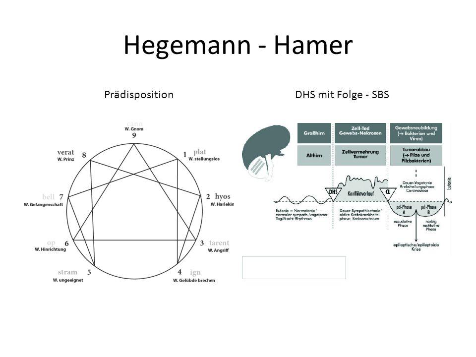 Hegemann - Hamer Prädisposition DHS mit Folge - SBS