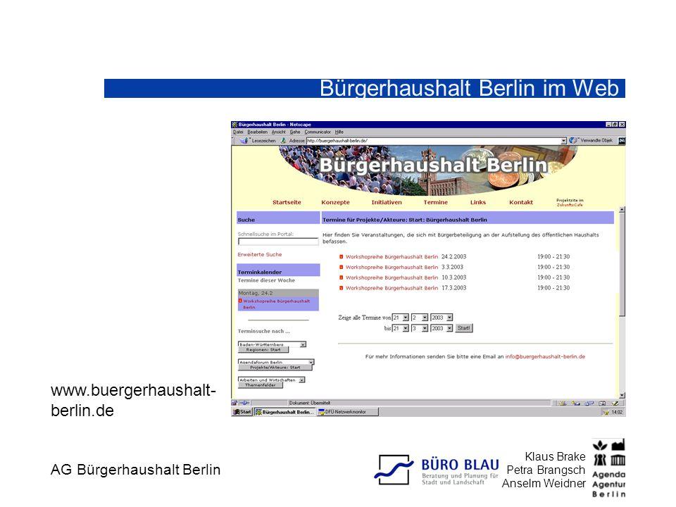 Bürgerhaushalt Berlin im Web