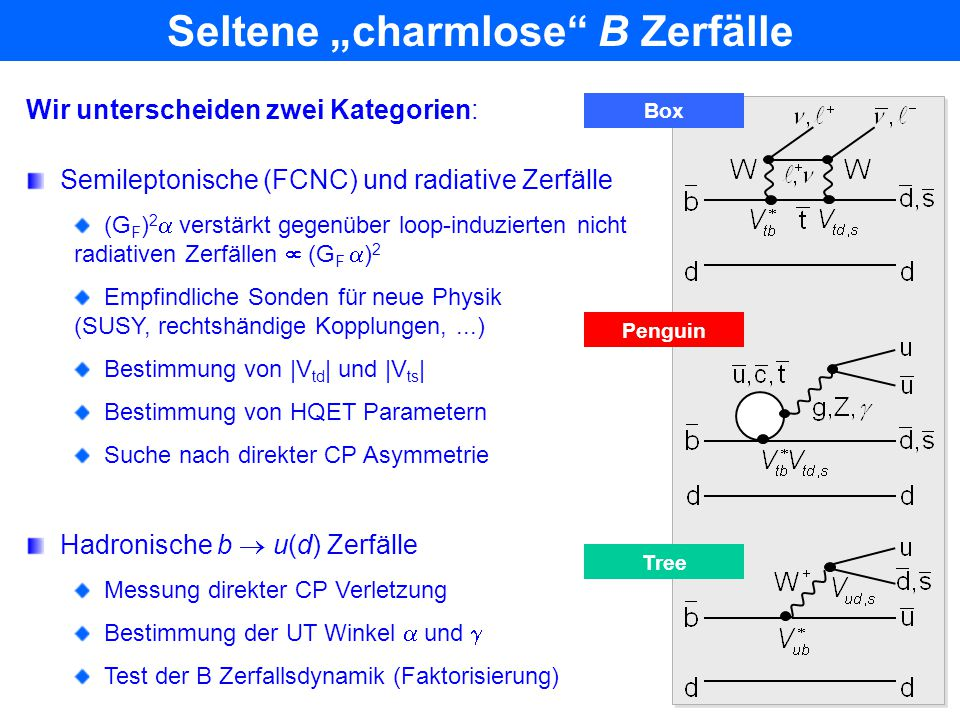 "Seltene ""charmlose B Zerfälle"