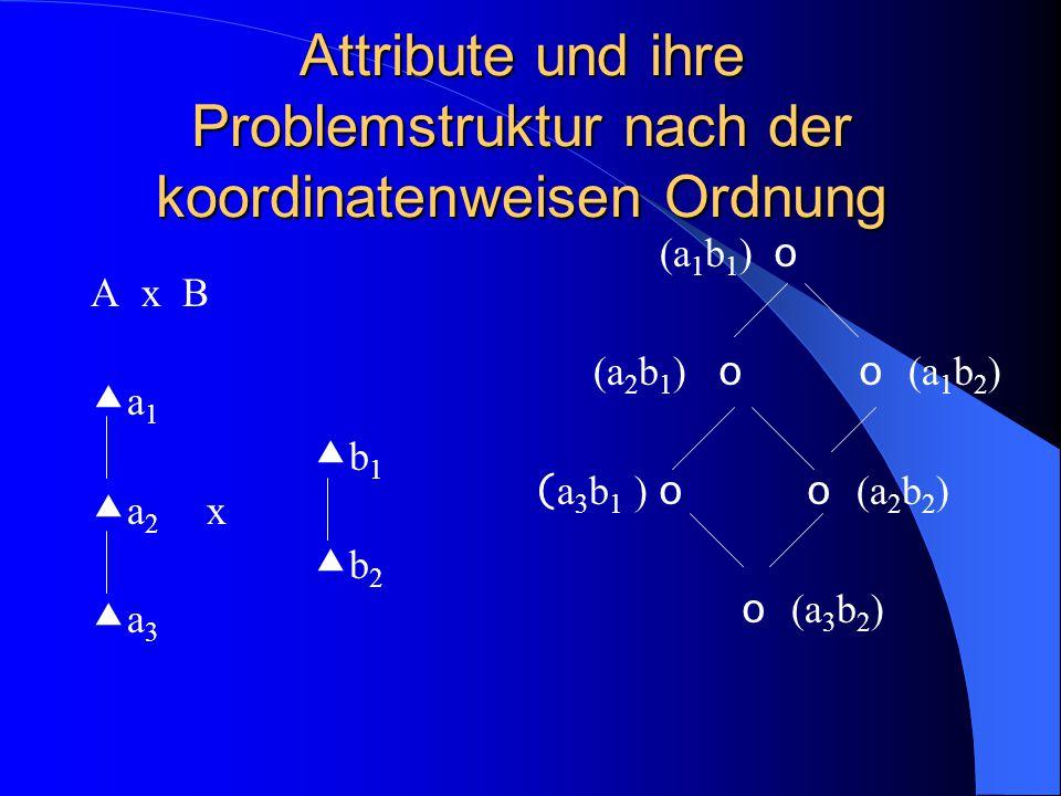 Attribute und ihre Problemstruktur nach der koordinatenweisen Ordnung