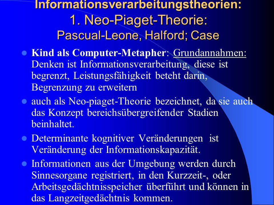 Informationsverarbeitungstheorien: 1