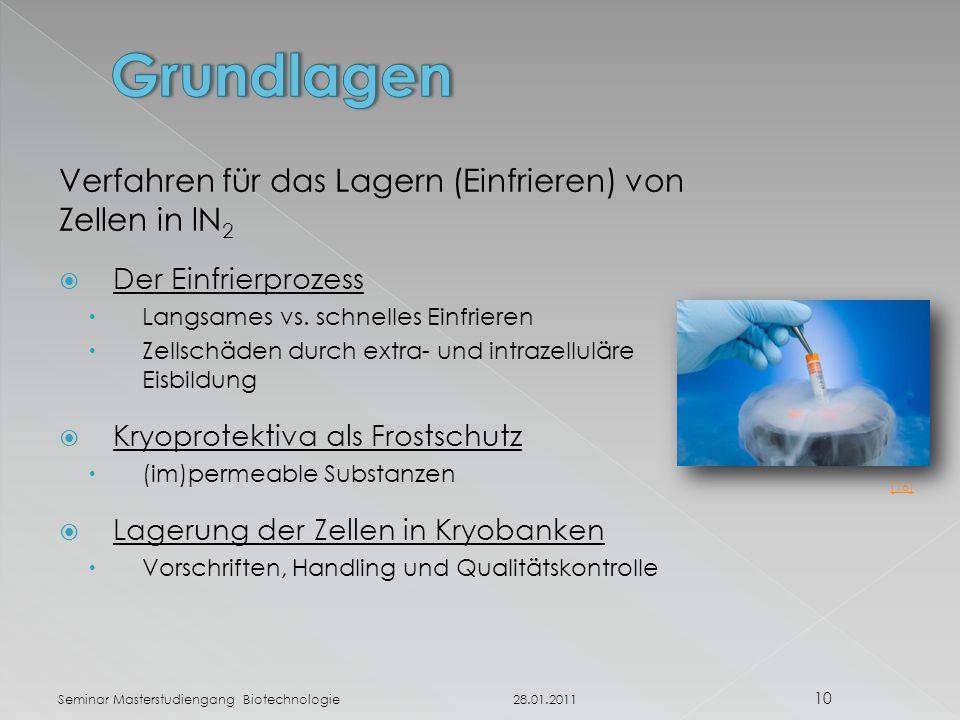 Grundlagen Verfahren für das Lagern (Einfrieren) von Zellen in lN2