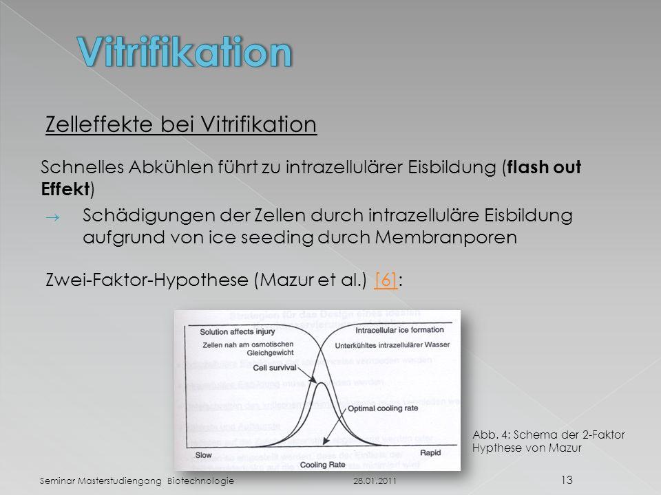 Vitrifikation Zelleffekte bei Vitrifikation