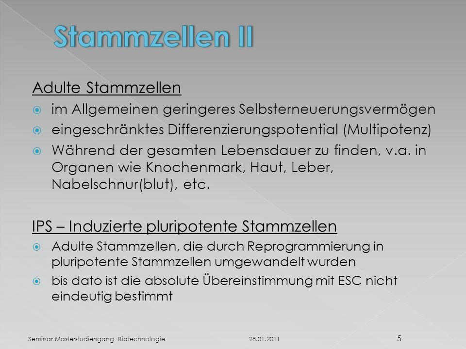 Stammzellen II Adulte Stammzellen