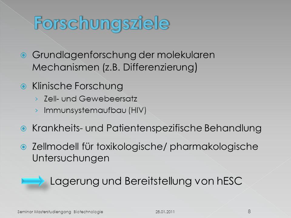 Forschungsziele Lagerung und Bereitstellung von hESC