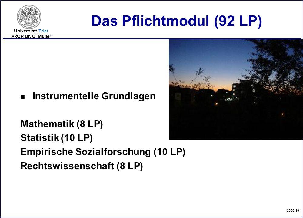 Das Pflichtmodul (92 LP) Instrumentelle Grundlagen Mathematik (8 LP)