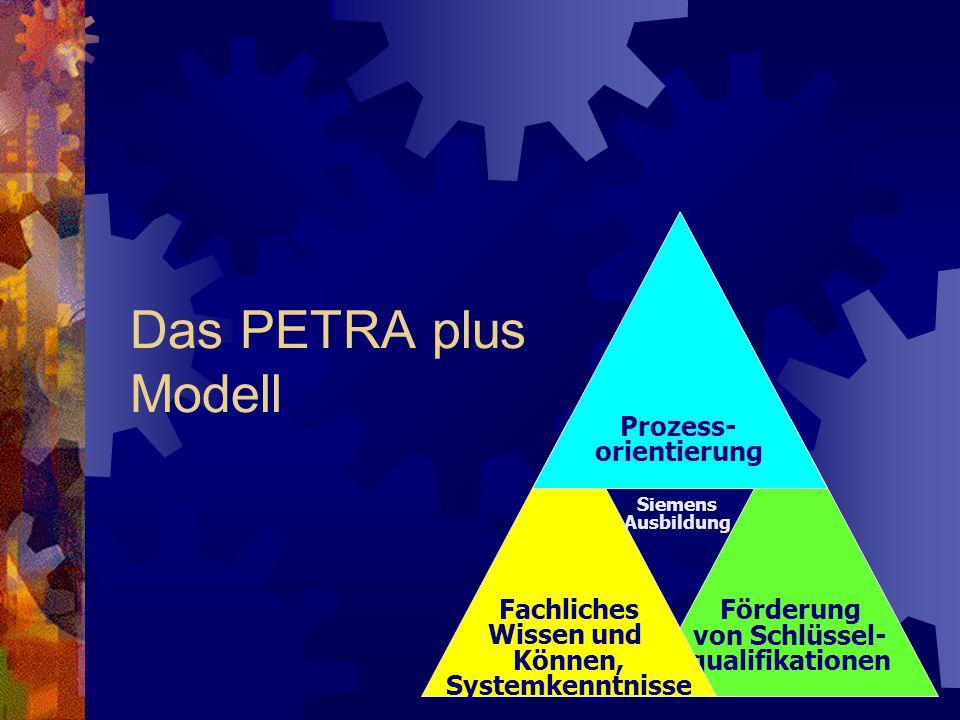 Das PETRA plus Modell Prozess- orientierung Fachliches Wissen und