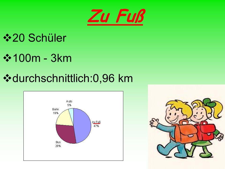 Zu Fuß 20 Schüler 100m - 3km durchschnittlich:0,96 km