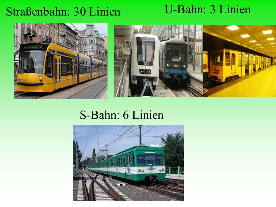 Straßenbahn: 30 Linien U-Bahn: 3 Linien S-Bahn: 6 Linien