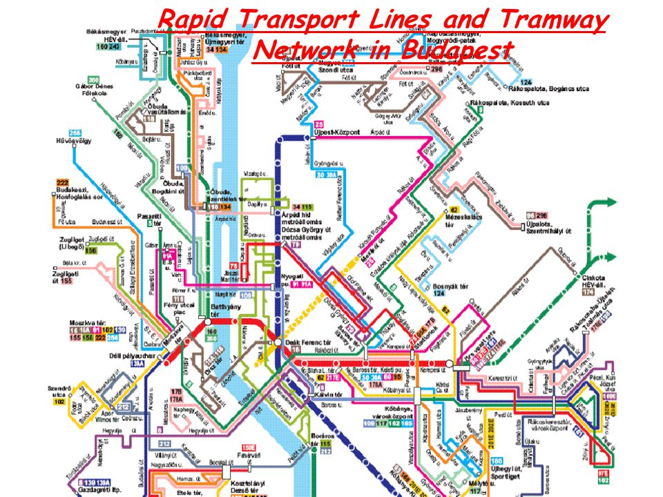 Rapid Transport Lines and Tramway Network in Budapest