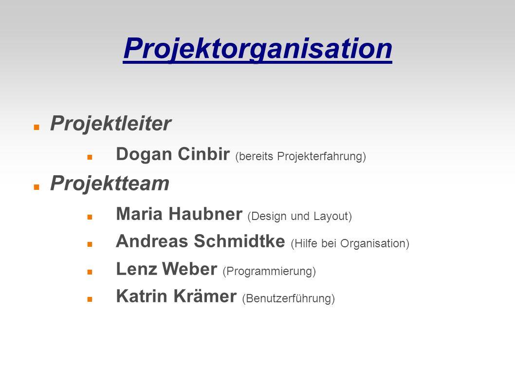Projektorganisation Projektleiter Projektteam