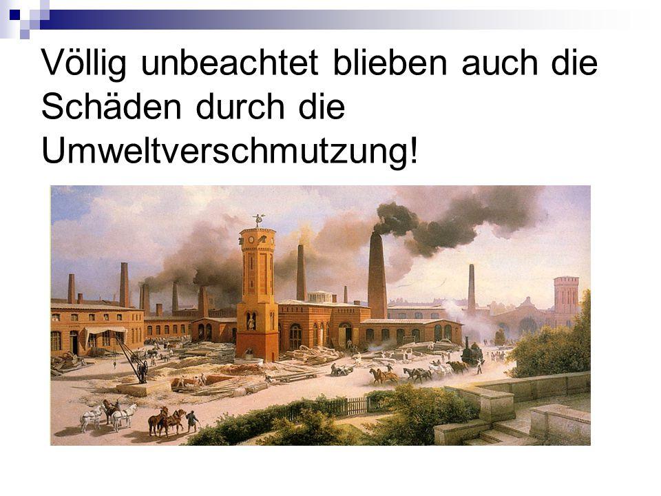 Völlig unbeachtet blieben auch die Schäden durch die Umweltverschmutzung!