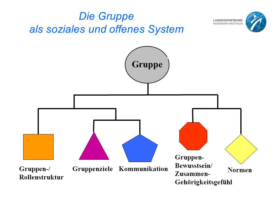 Die Gruppe als soziales und offenes System