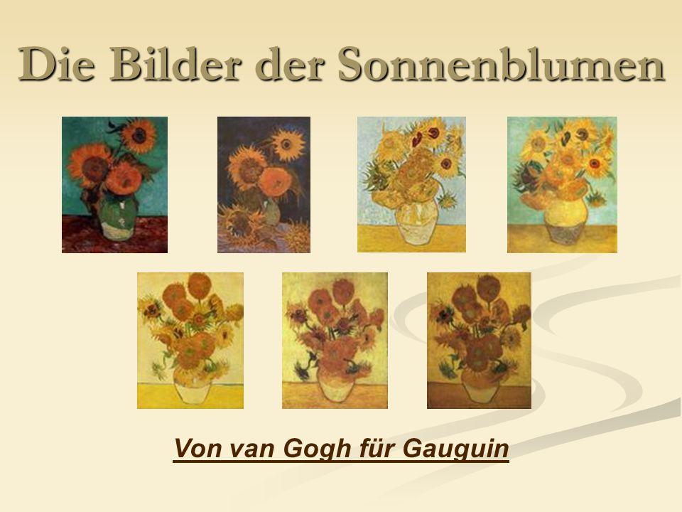 Die Bilder der Sonnenblumen