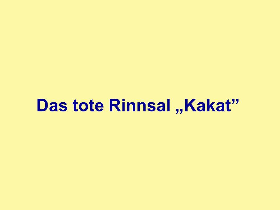 "Das tote Rinnsal ""Kakat"