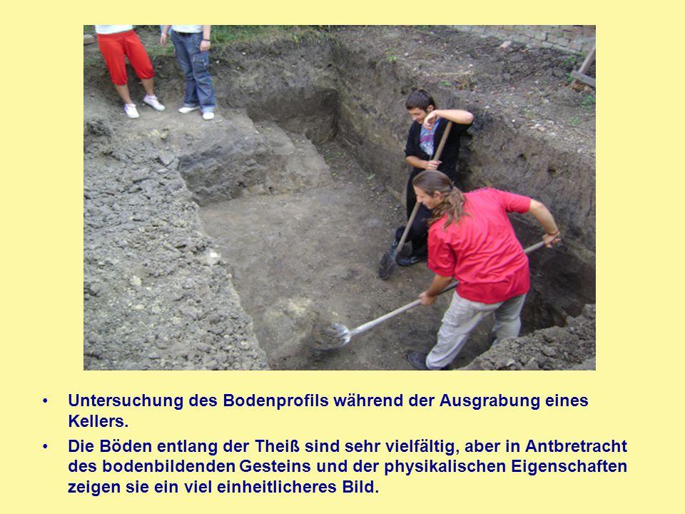 Untersuchung des Bodenprofils während der Ausgrabung eines Kellers.