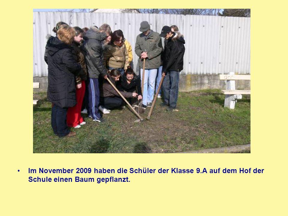 Im November 2009 haben die Schüler der Klasse 9
