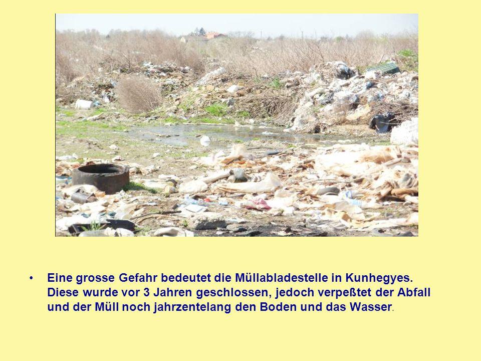 Eine grosse Gefahr bedeutet die Müllabladestelle in Kunhegyes