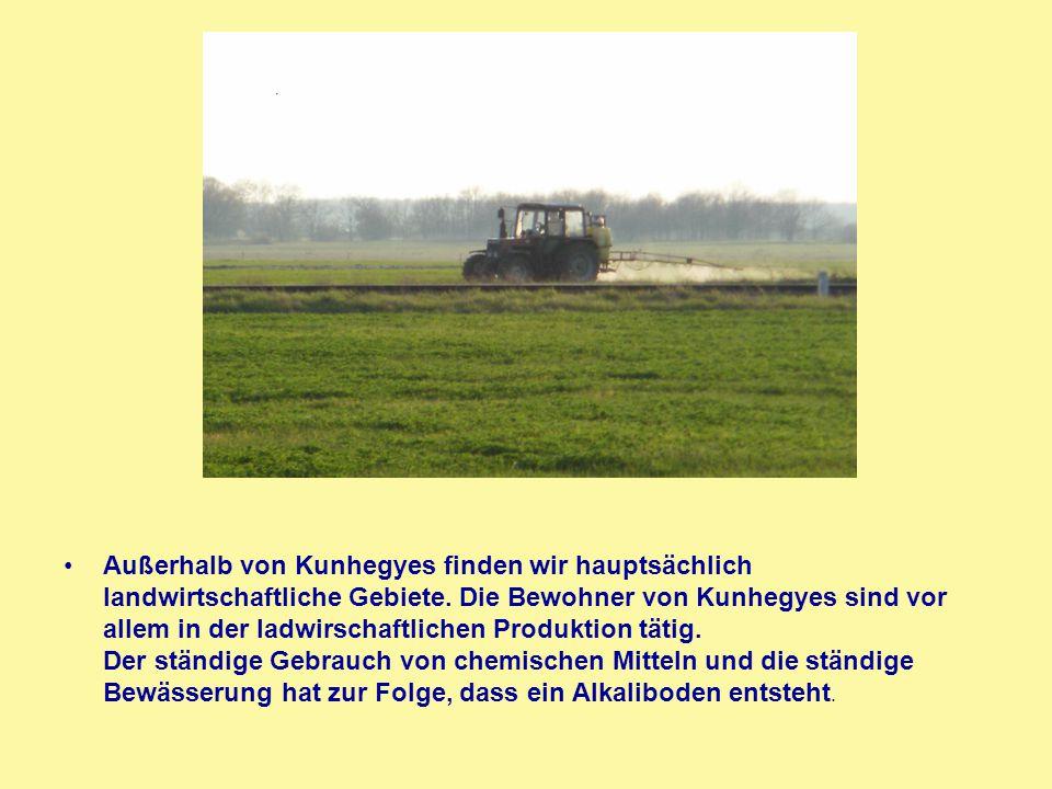 Außerhalb von Kunhegyes finden wir hauptsächlich landwirtschaftliche Gebiete.
