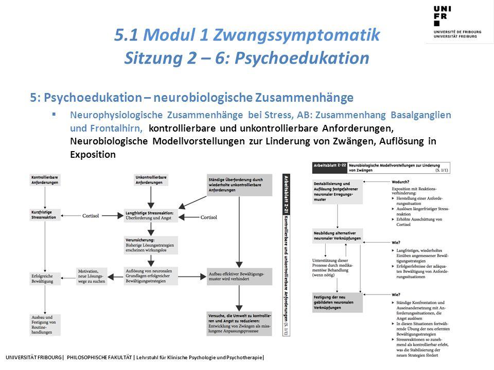 5.1 Modul 1 Zwangssymptomatik Sitzung 2 – 6: Psychoedukation