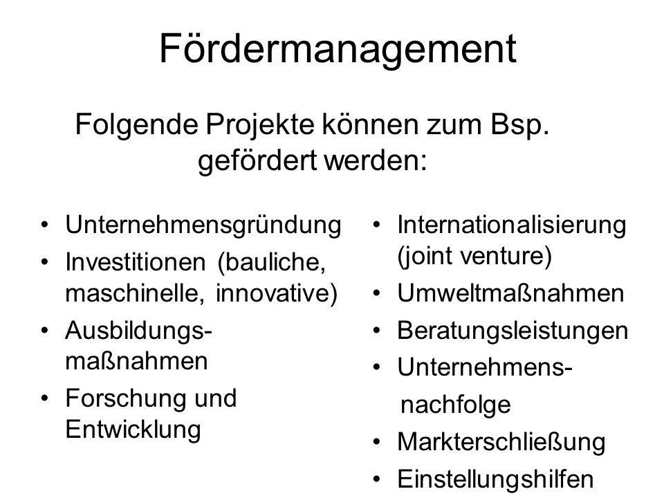 Folgende Projekte können zum Bsp. gefördert werden: