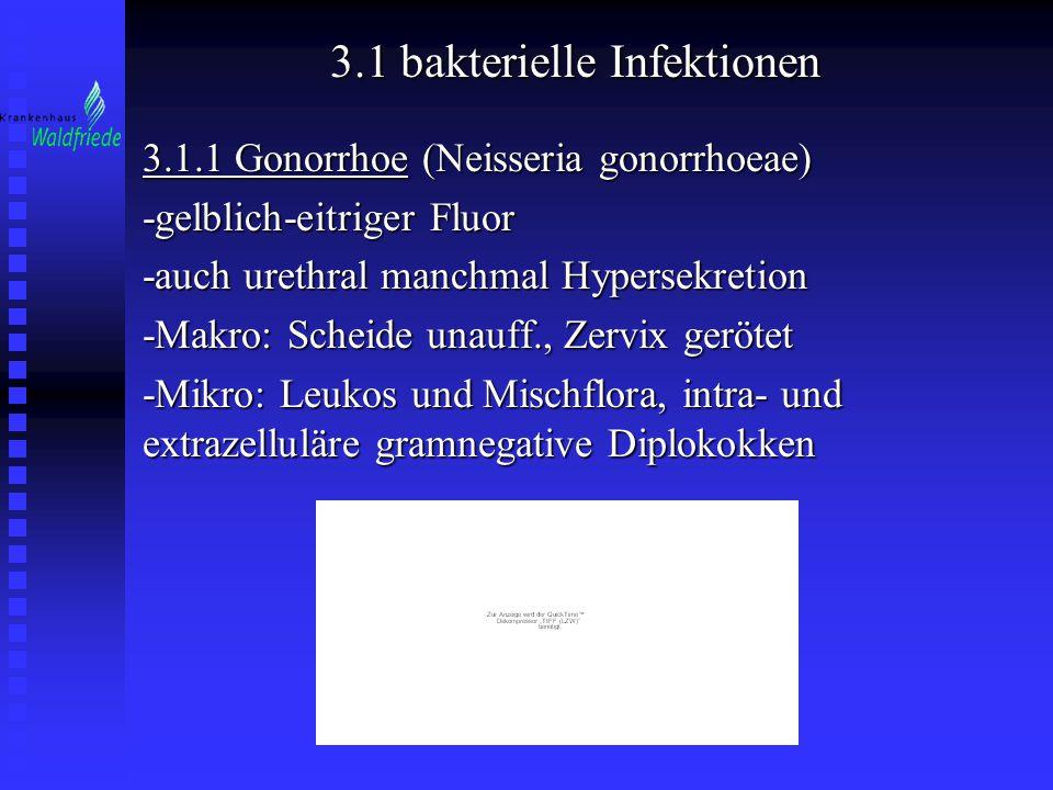 3.1 bakterielle Infektionen