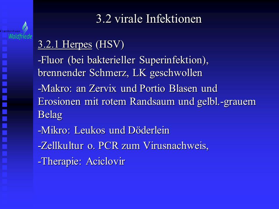 3.2 virale Infektionen 3.2.1 Herpes (HSV)