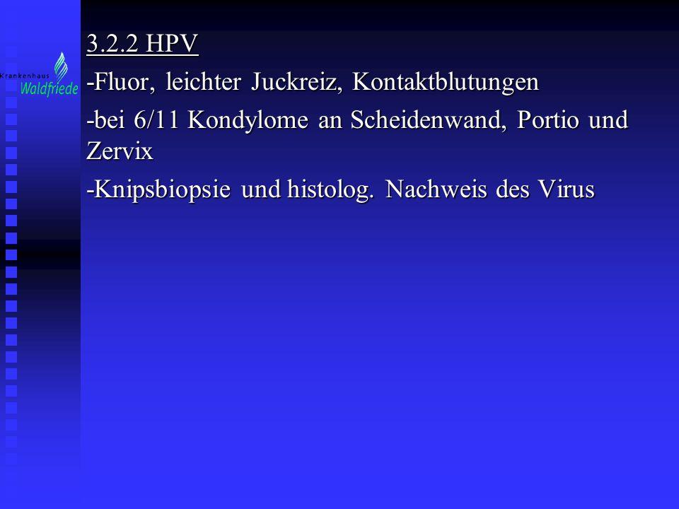 3.2.2 HPV -Fluor, leichter Juckreiz, Kontaktblutungen. -bei 6/11 Kondylome an Scheidenwand, Portio und Zervix.
