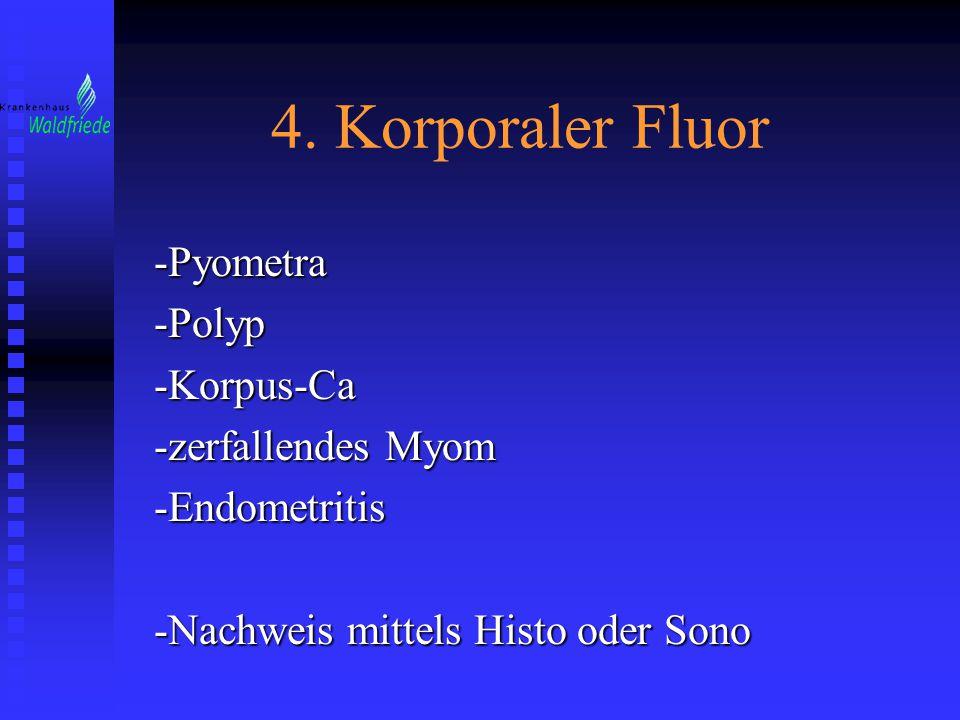 4. Korporaler Fluor -Pyometra -Polyp -Korpus-Ca -zerfallendes Myom