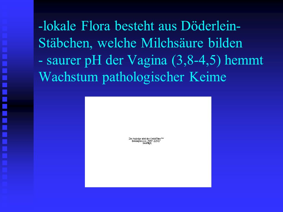 lokale Flora besteht aus Döderlein-Stäbchen, welche Milchsäure bilden - saurer pH der Vagina (3,8-4,5) hemmt Wachstum pathologischer Keime