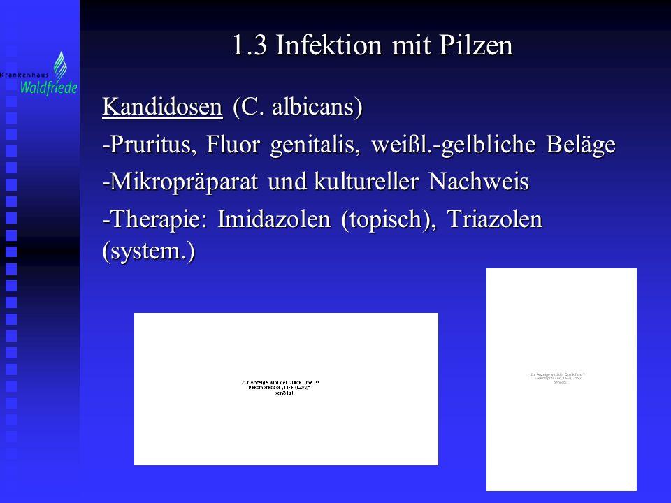 1.3 Infektion mit Pilzen Kandidosen (C. albicans)