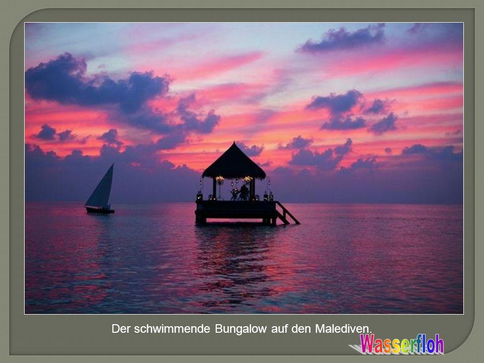 Der schwimmende Bungalow auf den Malediven.