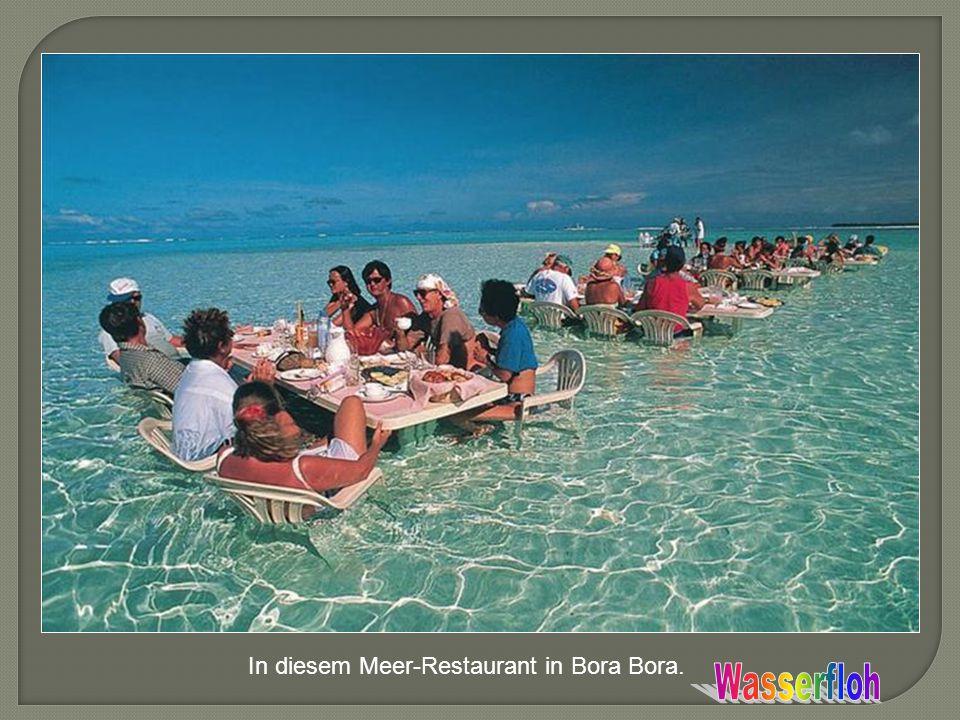 In diesem Meer-Restaurant in Bora Bora.