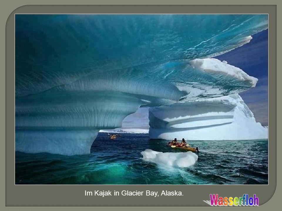 Im Kajak in Glacier Bay, Alaska.