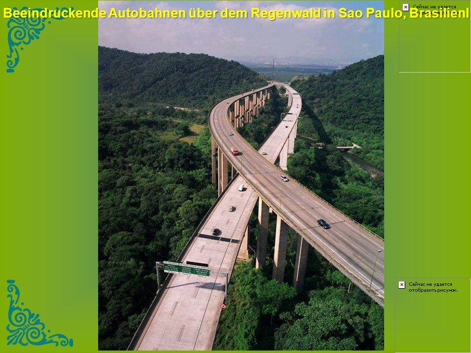 Beeindruckende Autobahnen über dem Regenwald in Sao Paulo, Brasilienl