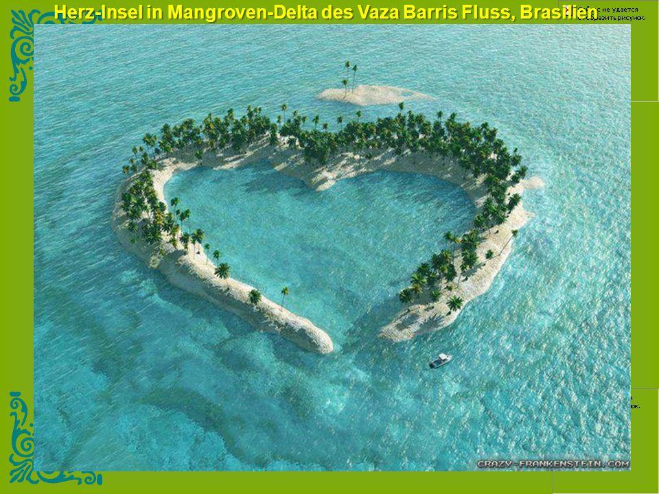 Herz-Insel in Mangroven-Delta des Vaza Barris Fluss, Brasilien