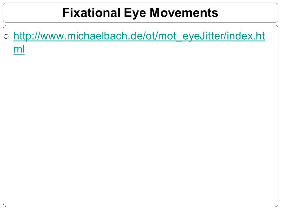Fixational Eye Movements
