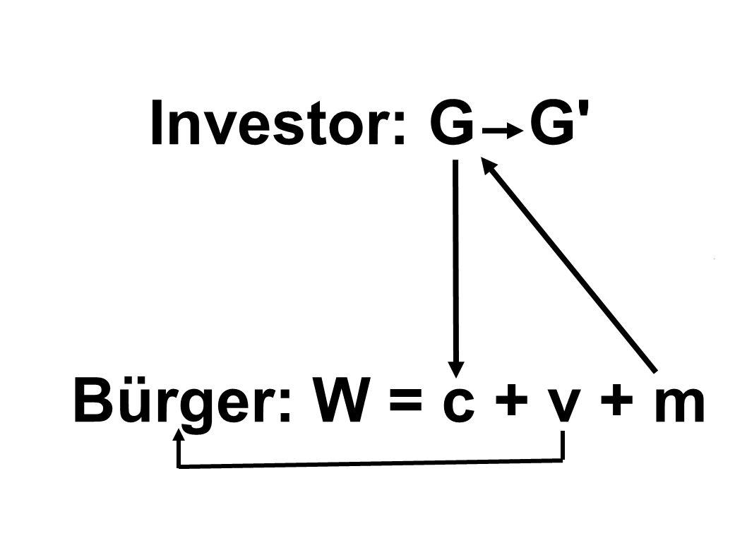 Investor: G G Bürger: W = c + v + m
