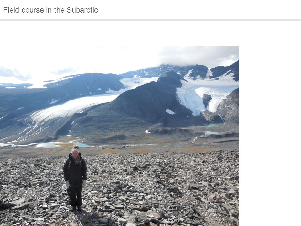 Field course in the Subarctic