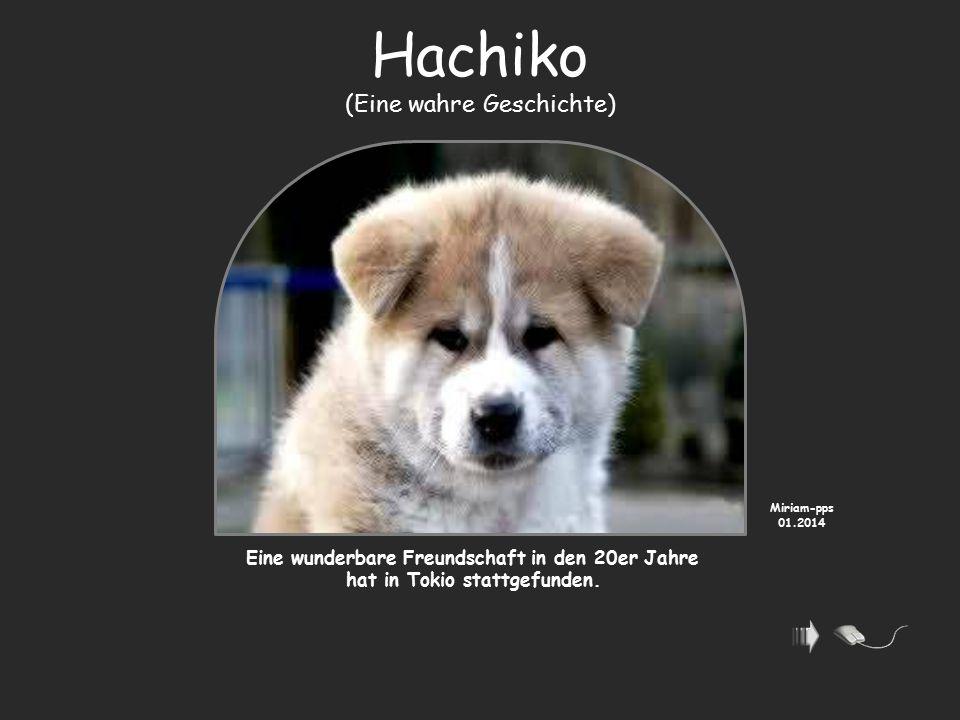 Hachiko (Eine wahre Geschichte)