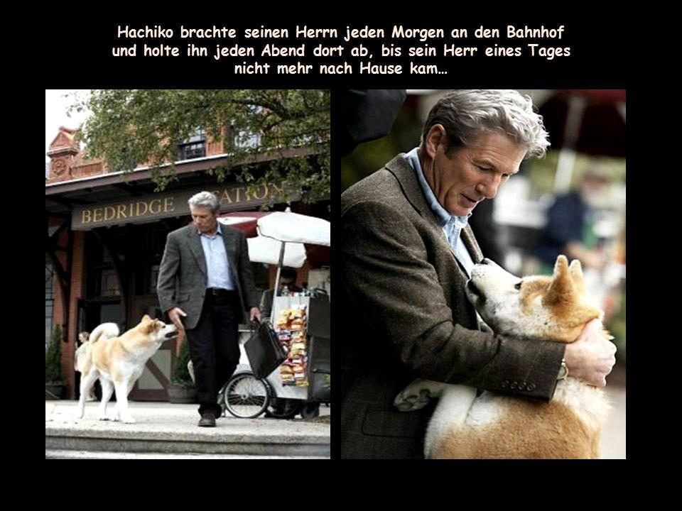 Hachiko brachte seinen Herrn jeden Morgen an den Bahnhof
