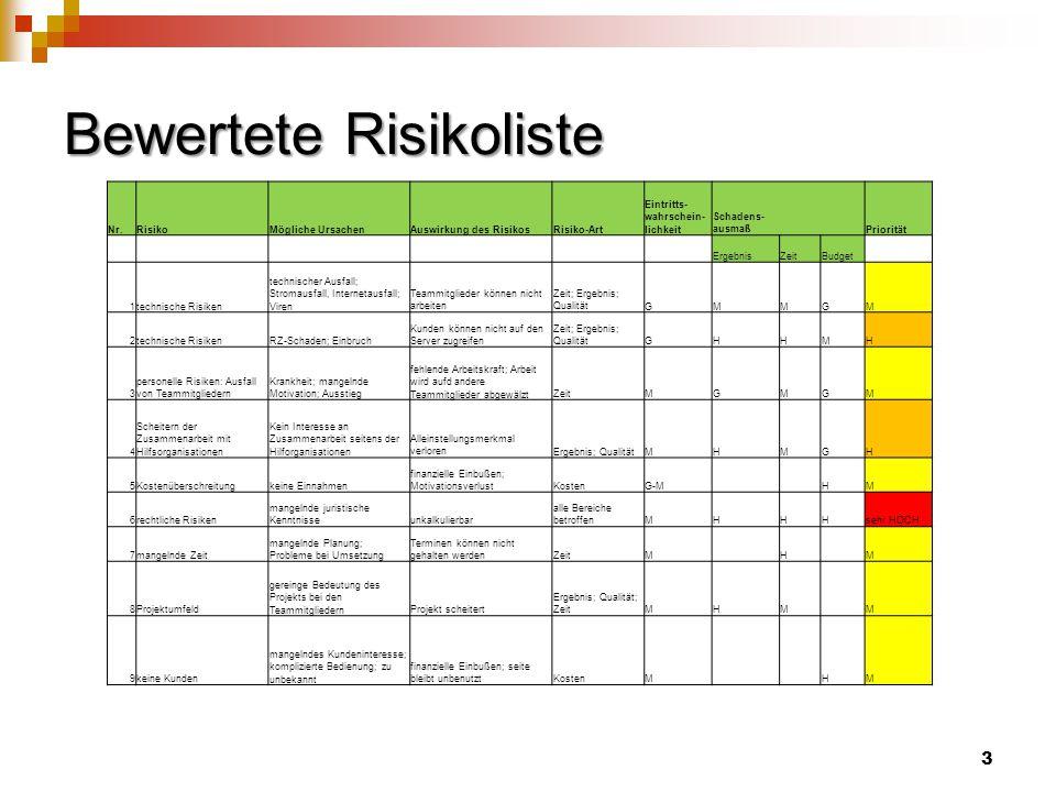 Bewertete Risikoliste