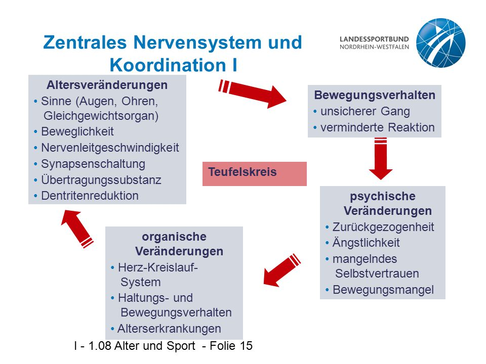 Zentrales Nervensystem und Koordination I