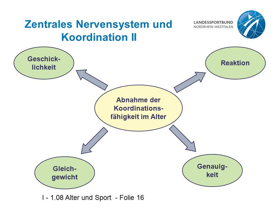 Zentrales Nervensystem und Koordination II