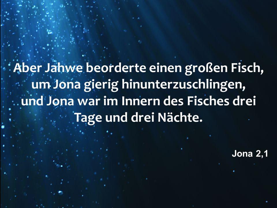 und Jona war im Innern des Fisches drei Tage und drei Nächte.